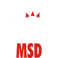 MSD Modern School of Design